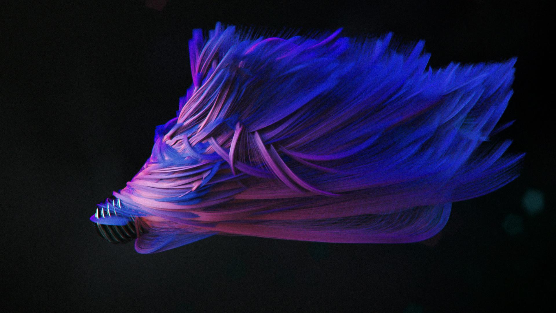 Hair_coloured_cc0100