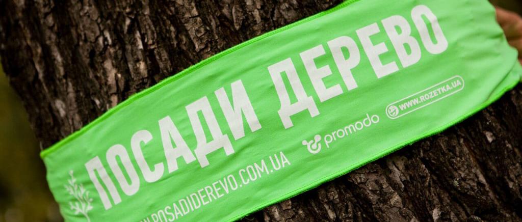 Посади дерево